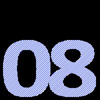 08 transp