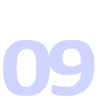 09 transp